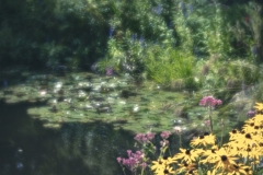 Tribute-to-Monet
