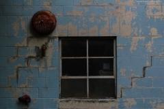 window-1-of-1-website